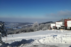 Arnika v zimě 2017